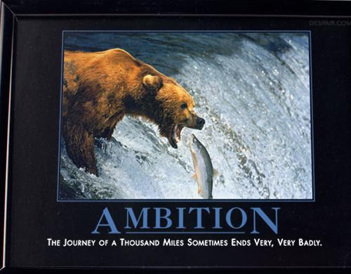 Bear Ambition