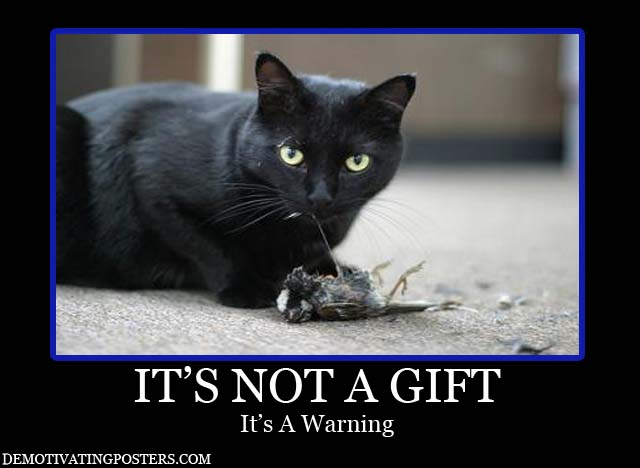 demotivational-posters-demotivational-poster-demotivating-posters-poster-funny-posters-denotivating-demotivational-cat-kitten-dead-bird