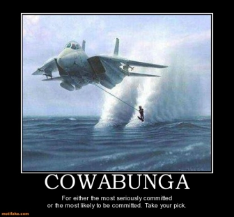 cowabunga-military-sports-waterskiing-airplane-demotivational-posters-1323139945