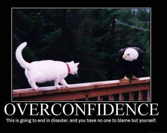 over-confidence-cat-eagle-demotivational-poster