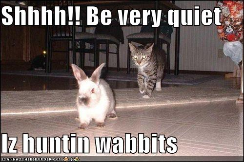 funny-pictures-cat-asks-you-to-be-quiet-because-he-is-hunting-rabbits